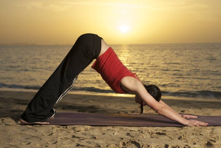 3-Downward Facing Dog